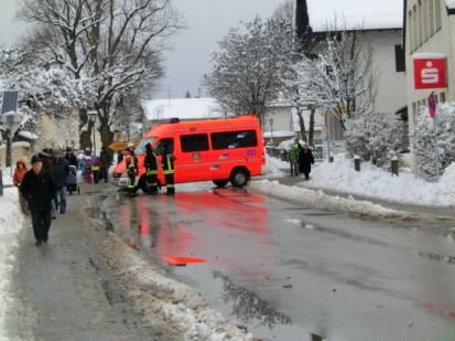 Pferdesegnung 2014 I