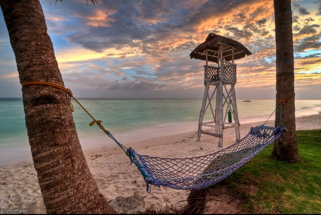 hammock on beach at sunset