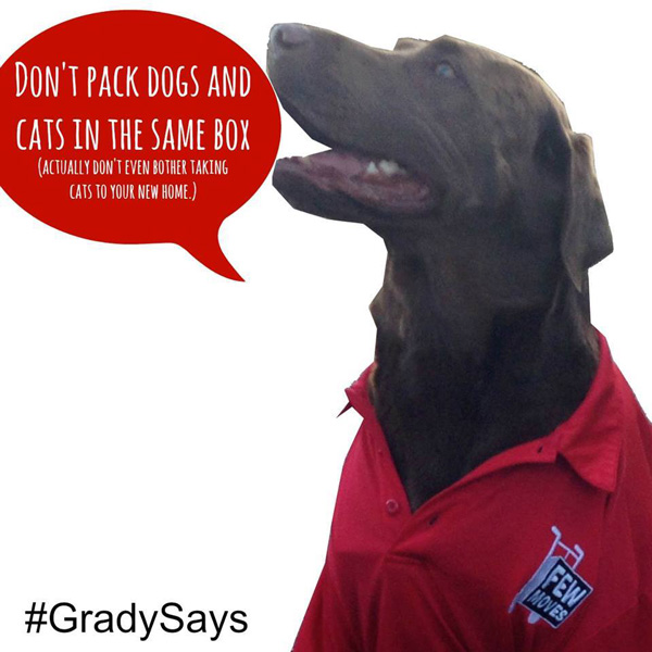 grady-dogs-cats