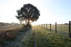 Winterliches Feld bei Erkrath, © Kreis Mettmann/M. Chardin