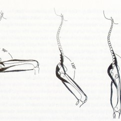 Coccyx Kneeling Chair Lafuma Laces The Problem With Sitting F E Wright  Autonomy