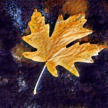 leaves16_04