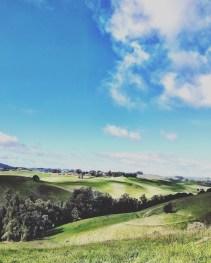petaluma_hike_02