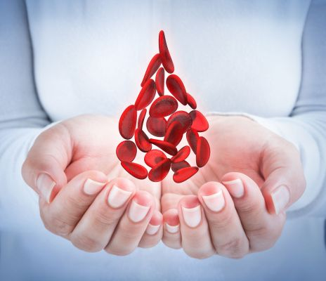 35507898 - blood cells in hands - shaped blood drop - donation concept