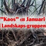 """Kaos"" i Landskapsgruppen"