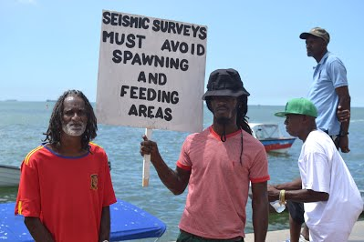 FFOS: Bp is lying about the effect of seismic surveys!
