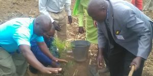 FF-SPAK Chairman Planting a tree during a function