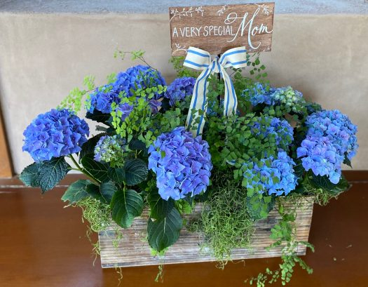 "Hydrangeas And Fern In 18"" Rectangular Wood Planter"