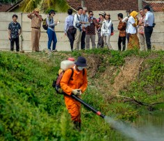 A worker spray pesticide to kill mosquito larvae at an abandoned shrimp farm in Hanura Village in Lampong Province in the island of Sumatra Tuesday 27 November, 2018. (Jiro Ose / The Global Fund)