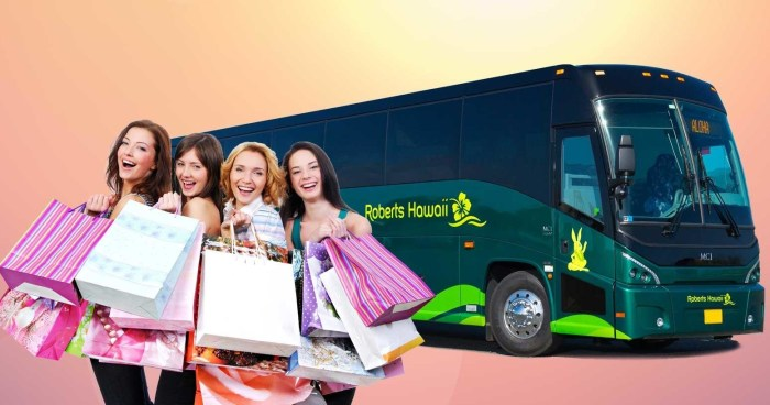 Waikele Premium Outlets Shuttle Transportation From Waikiki