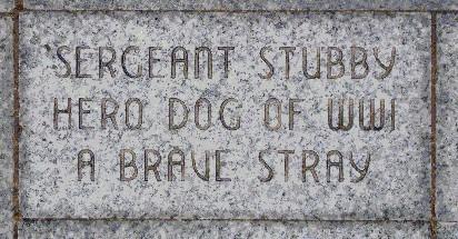 Sergeant Stubby's memorial at Liberty Memorial.