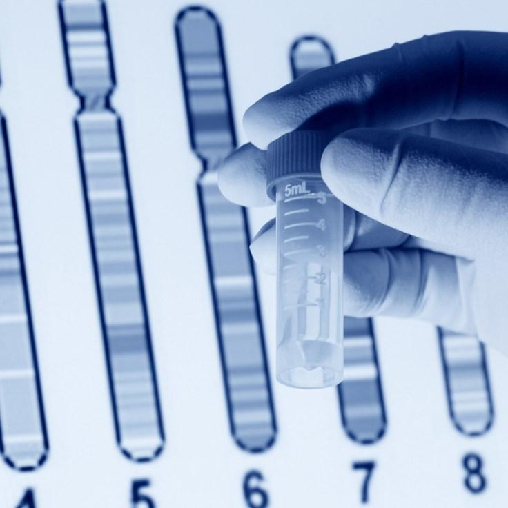 Mapeo cromosómico durante la prueba de ADN.