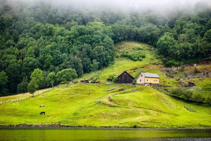 a farmland in norway