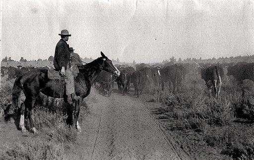The Homestead Act of 1862 offered free land to settlers, motivating farmers and businessmen alike to join the westward expansion.