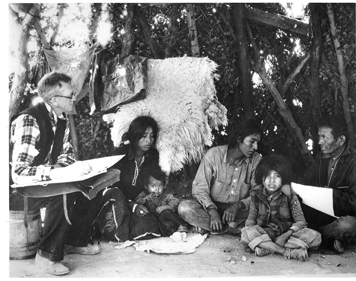 navajo, native american census,