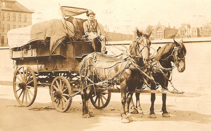 a norwegian man drives his carriage into the city.