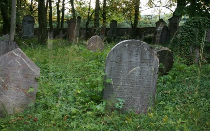 an overgrown cemetery.