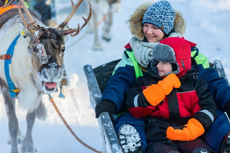 finnish family on a sled ride