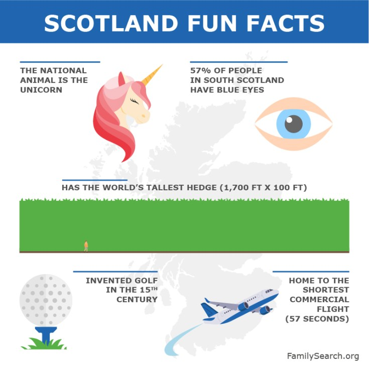 a graphic showing fun facts about scotland