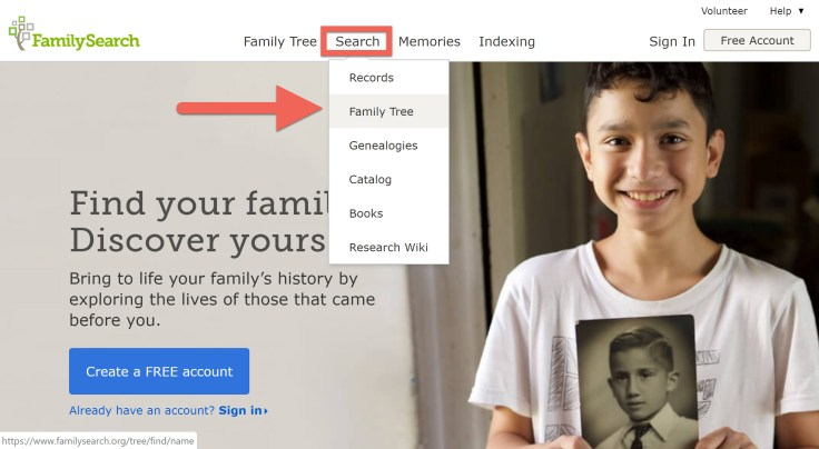 how to see your family tree for free