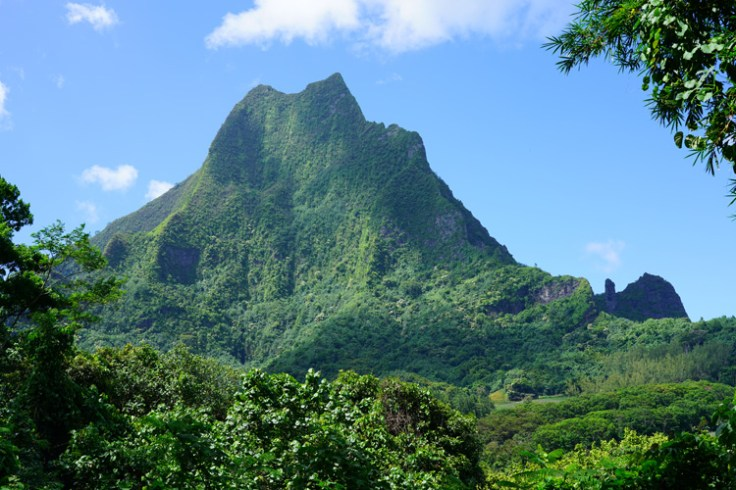 a mountain on a tropical island.