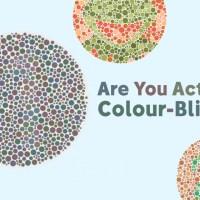 Are You Actually Colour-blind?