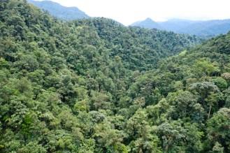 Blick von der Seilbahn auf den Rio Mindo