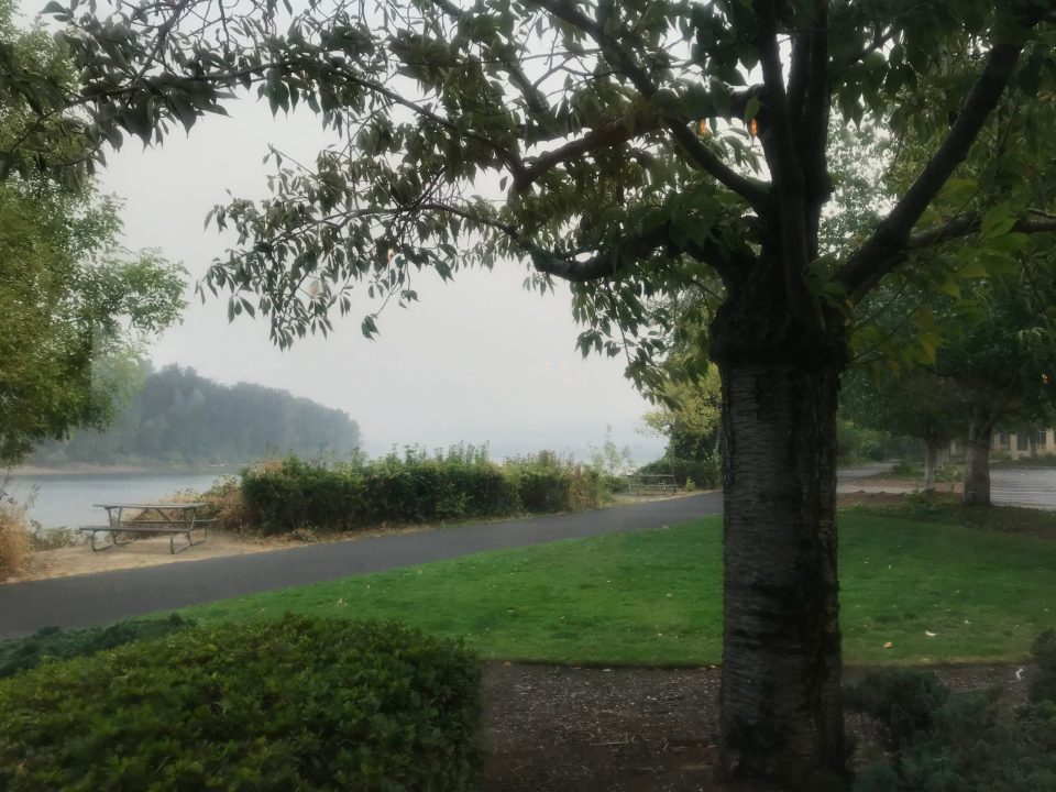 Photo of smoke from forest fires limiting visibility on the Willamette River.