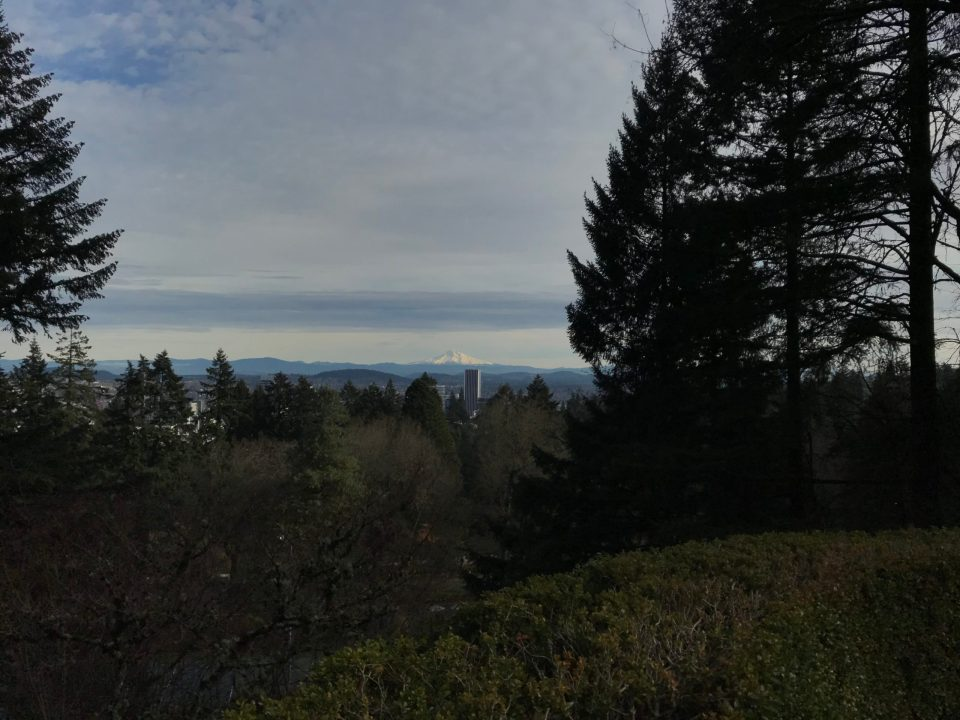 Photo of a snow-covered Mt. Hood as seen from the Portland Japanese Garden.