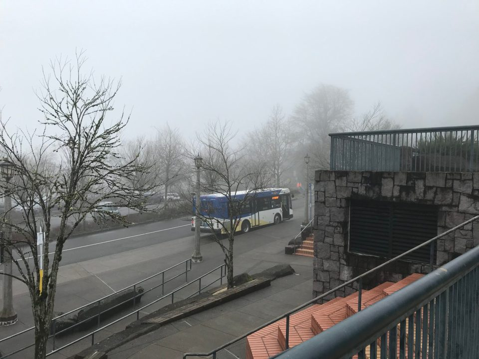 Photo of a foggy Washington Park seen from the plaza about the MAX station.