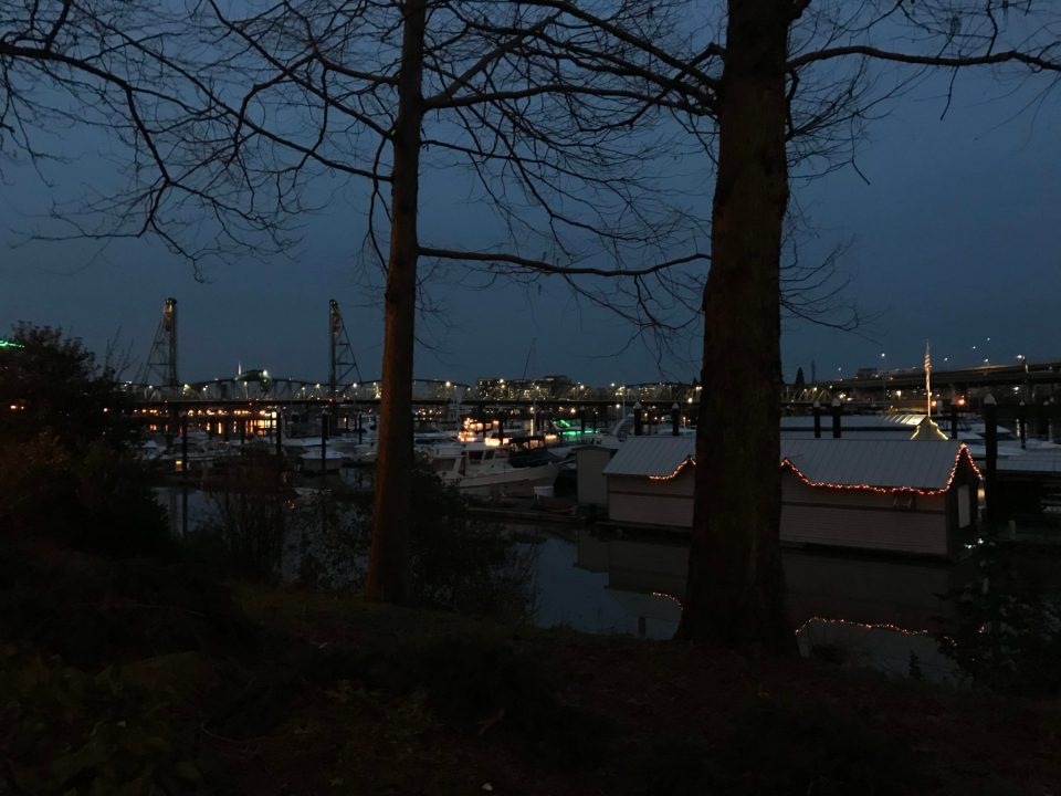 Photo of Riverplace Marina at night.