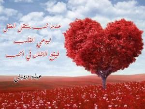 اقتباسات عبلة درويش عن الحب