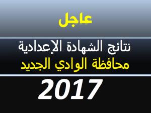 نتيجة الشهادة الاعدادية محافظة الوادي الجديد 2018 الترم الثاني