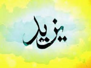 معنى اسم يزيد