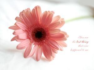 كلام حب رومانسي قصير للحبيب