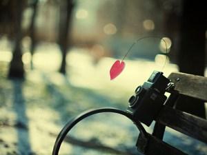 احلى كلام في الحب