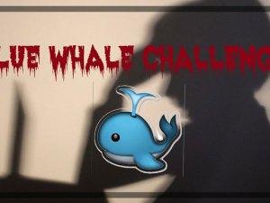 معلومات عن لعبة الحوت الازرق تفاصيل مهمة عن لعبة الحوت الازرق