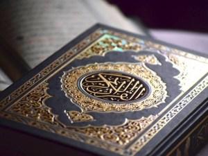 ماهو الحرف الذي خلت منه كل اسماء سور القرآن الكريم