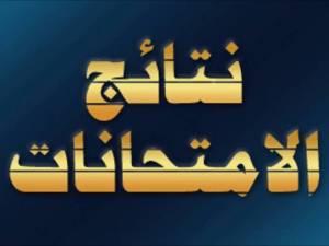 محافظة الاسكندرية نتائج الامتحانات