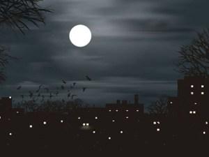 خواطر عن هدوء الليل