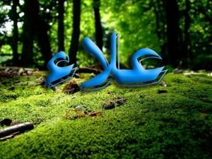 معني اسم علاء