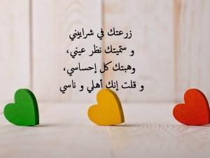 اجمل واحلى مقولة في الحب