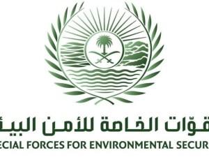 رابط الاستعلام عن نتائج وظائف الأمن البيئي عبر أبشر للتوظيف