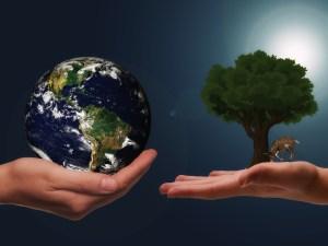 الغلاف الحيوي للأرض هو جزء من الأرض تعيش فيه مخلوقات حية