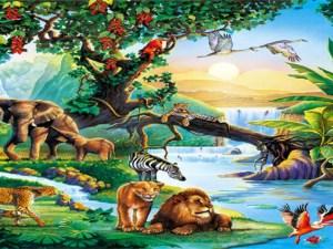 اي التصنيفات التاليه تضم اكبر عدد من المخلوقات الحيه