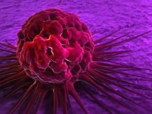 ينتج عن الفشل في تنظيم دورة الخليه مرض السرطان