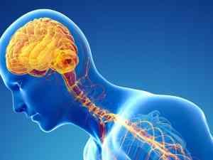 اسهامات العلماء قديما وفي العصر الحديث حول علاج الجهاز العصبي