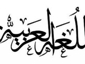 حول الارقام في الجمل التالية الى الفاظ عربية