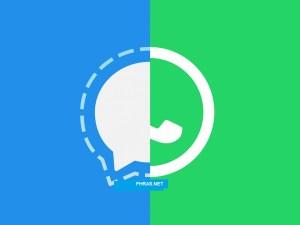 طريقة نقل محادثات الواتساب الى سيجنال signal الجديد