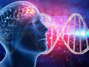 الجين المتقابل المسؤول عن ظهور الصفه الوراثيه غير النقيه هو